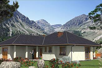 Projekt domu L-11 Dom tradycyjny
