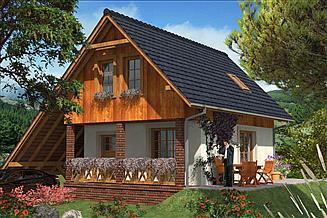 Projekt domu L-12 Dom tradycyjny