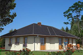 Projekt domu L-65 Dom tradycyjny