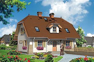 Projekt domu Paproć