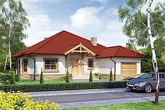 Projekt domu Brutus