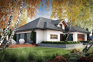 Projekt domu Nebraska