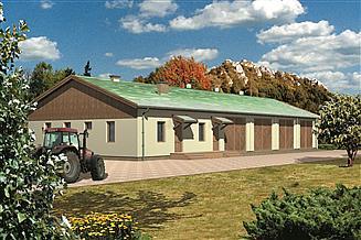 Projekt budynku gospodarczego WB-3853