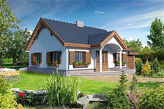 Projekt domu Sofia V LMB41d