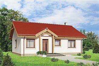 Projekt domu Tula