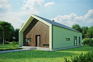 Projekt domu House 13