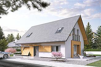 Projekt domu Albit