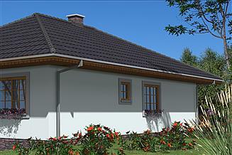 Projekt domu L-76 Dom szkieletowy