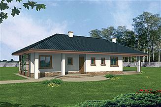 Projekt domu Fiona