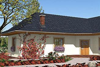 Projekt domu A-113 Dom szkieletowy