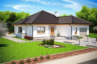 Projekt domu Falko