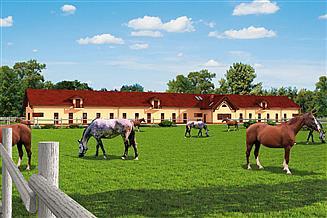 Projekt stajni S39 Stajnia dla koni - 37 boksów
