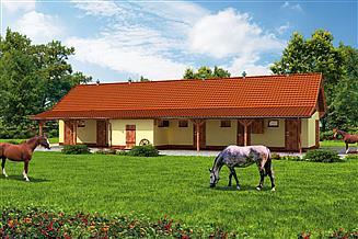 Projekt stajni S38 Stajnia dla koni - 5 boksów