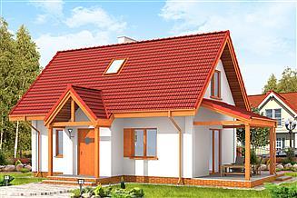 Projekt domu Okruszek