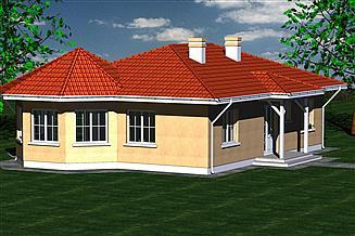 Projekt domu Dom 110