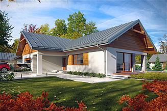 Projekt domu Arte
