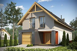 Projekt domu D102C