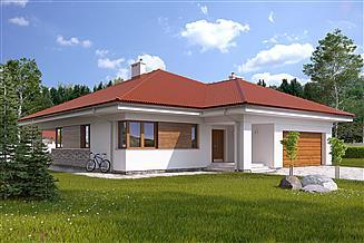 Projekt domu Decyma
