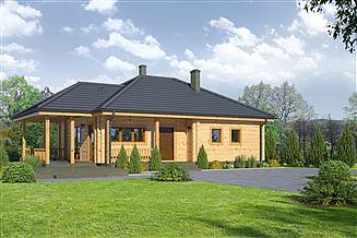 Projekt domu Arturowo dw