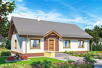 Projekt domu Tamina