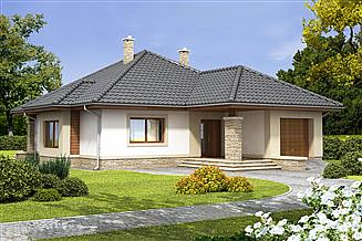 Projekt domu Imbir PS (paliwo stałe)