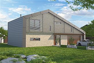Projekt domu Temerin II DCP313a