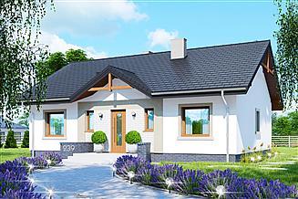 Projekt domu APS 239