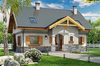 Projekt domu Ignaś