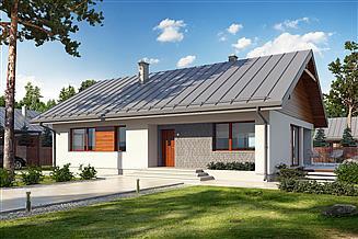 Projekt domu Endo drewniany