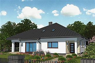 Projekt domu APS 273