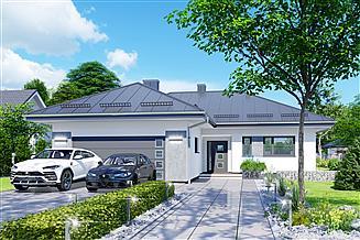 Projekt domu APS 264