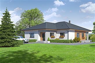 Projekt domu Ardenowo usługi