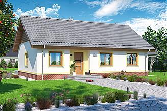Projekt domu Tamina mała PS