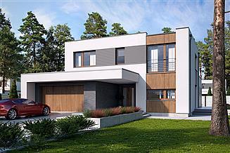 Projekt domu Mikado