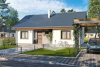 Projekt domu Tobiasz paliwo stałe