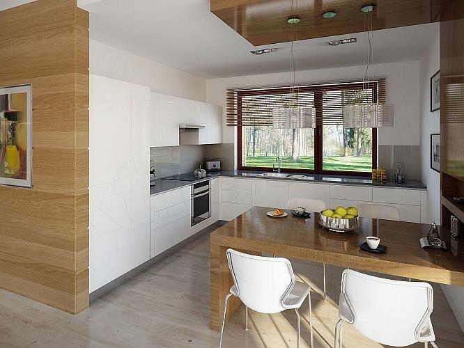 Дизайн одноэтажных частных домов внутри