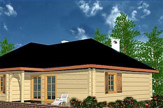 Projekt domu BR 203