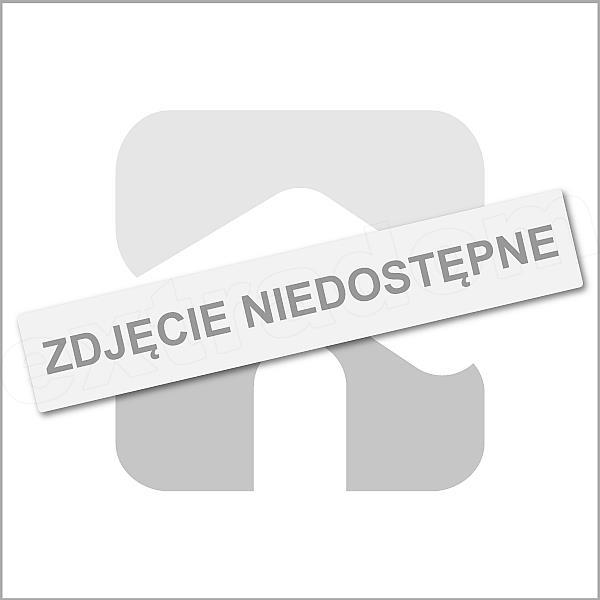 Rzut poddasza projektu Z302