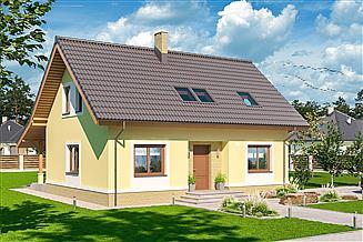 Projekt domu Amor