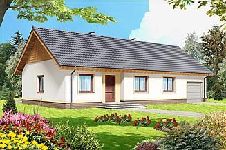 Projekt domu Tamina mała PS 2