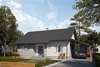 Projekt domu SD1