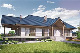 Projekt domu Nimius I PG2
