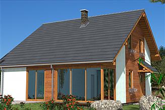 Projekt domu A-141 Dom szkieletowy