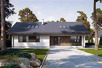 Projekt domu Endo 3 drewniany