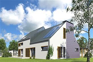 Projekt domu Z kominem