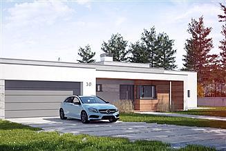 Projekt domu Illecebrosus II G2