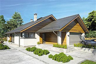 Projekt domu Pliszka V