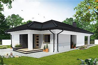 Projekt domu Zelandia