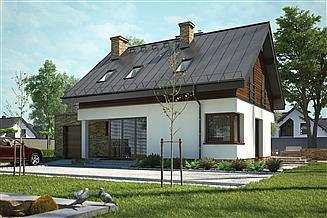 Projekt domu Senea