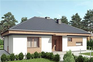 Projekt domu uA1